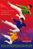 3 Ninjas Kick Back