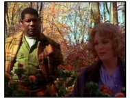 """Far From Heaven"" Trailer Video Still: Far From Heaven"