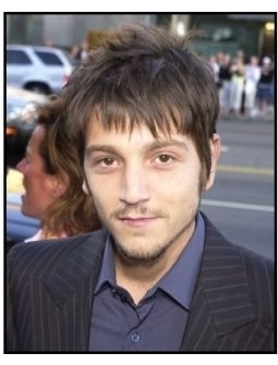 Diego Luna at <I>The Terminal</I> premiere