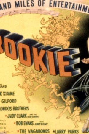 Hey, Rookie