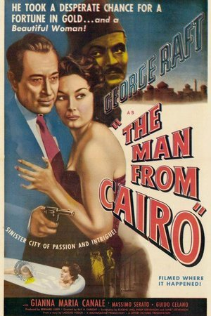 Man From Cairo