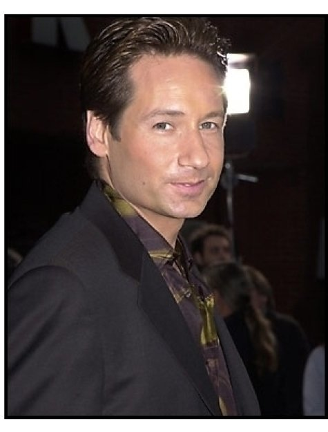 David Duchovny at the Evolution premiere